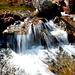 Rii di Magliasina. Nonostante la siccità, la valle è ricca di fontane, ne ho contate ben 12.