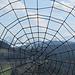Hochgrat und Rindalphorn durchs Spinnennetz gesehen