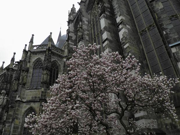 Impressionen aus Aachen(2)