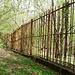 Der Grenzzaun CH-I wurde vor rund 100 Jahren erstellt- Ursprünglich mit kleinen Glöcklein