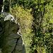 Die steilen Talflanken besitzen neben Wald auch Felsen.