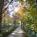 Herbstfarben romantisch und schön
