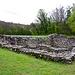 Ruine Freudenau