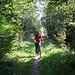 unterwegs durch den Perlacher Forst