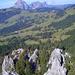 Ausblick vom Chli Schijen auf die im Wald verborgenen Felszähne und die Mythen