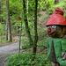 Les habitants de la forêt...