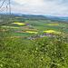 Das Plateau von Känerkinden
