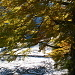 Herbst und Winter zusammen