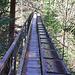 Auf einer langen Brücke überquert die Bisse die Schlucht der L'Ojintse