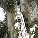 Auf dem Weg von der Leiterenfluh zum Türlistock - die Leiter inmitten der Nagelfluhwand