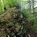 entlang einiger kleinerer Felswände