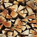 Eine der farblich schönsten Holzbeigen, die ich je gesehen habe.