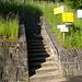 Bis Rigi Kulm: 4.5h hike. Let's run!