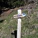 al bivio dx Alp de Martum, sx Piz de Molinera