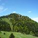 Frühlingsgrün um den Austock - die Felsen des Ostgrats mögen sich kaum daraus erheben