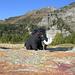 Piacacra-Mammut