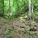 Hier ist gut das Isoklinaltälchen zu erkennen, entstanden aus einem Bergsturz.