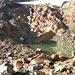 Gletschersee am Fusse des Ghiacciaio Grande di Croslina