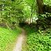 Der alte Hohlweg vom Ruppen nach Altstätten