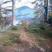 Hier stand einst der Swisscom Fernmeldeturm. Blick zum Etzel