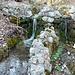 Corsi d'acqua nei pressi delle grotte di Valganna