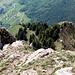 Der Ausstieg bzw. Tiefblick auf's Rot Grätli. Wer hier absteigt, muss vor dem Felsenturm rechts hinunter in die Felsspalte.