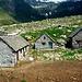 Alpe Forno Inferiore m. 2222