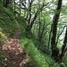 Entre Bärfallen et Zillistock il y a des endroits où il vaut mieux ne pas tomber même si le sentier n'est pas difficile.