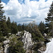 Hier wird der geologische Wechsel zwischen Nagelfluh (Speer) und dem Kalkstein des Säntismassivs sichtbar. Geologisch gesehen, sind wir erst jetzt in den Alpen ;-)