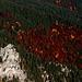 Herbst in den Ammergauer Alpen