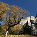 Herbst bei der Kenzenhütte
