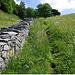 Sorgfältig restaurierte Trockensteinmauer in Oberbirgisch
