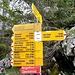 nicht wegen der vielen Wandermöglichkeiten habe ich den Wegweiser fotografiert, sondern wegen der Vorfreude aufs Käfeli auf der Oberstockenalp....
