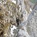 Bea im Aufstieg zum Altmannsattel