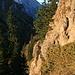 """goldene Morgenstimmung beim Aufstieg zum Feigenkopf, dahinter die <a href=""""http://www.hikr.org/tour/post9141.html""""><strong>Hochplatte</strong></a>"""