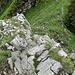 Die Schlüsselstelle auf dem Grat. Auf unserer Variante muss sie im Abstieg bewältigt werden. Der Fels ist gut gestuft und tadellos.