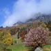 Herbst in Lüsis. Oben ist deutlich die auffällige Rinne zu sehen, auf die man zuhalten muss, falls man die Normalroute wählt.