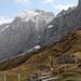 Große Scheidegg: Blick auf das Wellhorn