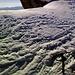 Particolare sul ghiacciaio della Presanella.Sono presenti un paio di crepacci (evidenti al tempo di questa gita) e un impressionante seracco