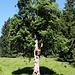 Am Hohlen Ahorn, <br />sogar in der AV-Karte eingetragen.<br />Der Baum soll über 300 Jahre alt sein unt hat einen Stammumfang von über 3 m