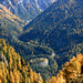 Herbst in Oberengadin: wunderschön!