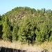 Klein, aber auch ein Berggipfel: Der Tricias 1209 m