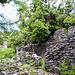Verfallene Steinhütte am nordwestlichen Sattel P1039
