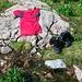 Pause an einem Bach im Hochtal nach dem Abstieg vom Funtenseetauern (2579m) durch das Lederkar.