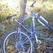 Fahrraddepot.