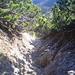 Die drahtseilverischerte Abstiegsrinne auf dem Weg ins Schinderkar (war ein wenig steiler, als es auf dem Foto rüber kommt).