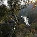 Blick vom Umlaufberg auf die Thaya