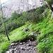 unangenehmer Weg sehr viel loses Geröll das vor allem beim Abstieg lästig werden kann