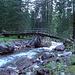 """Die Brücke steht noch - und ist sogar mit """"Bütz"""" angeschrieben"""