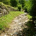 Der mit Steinen gepflästerte Kreuzweg von Sant'Abbondio